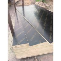 One Forming 12mm Plywood Made In China For Sale 91134860
