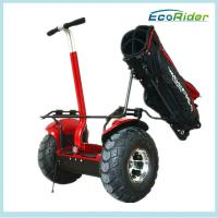Quality Self Balancing Electric Golf Scooter Segway Outdoor Dual Wheel for sale