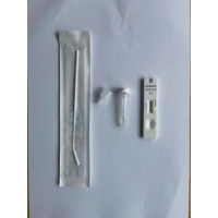 Quality Rapid Coronavirus antigent test kit with CE and ISO certificate 13485 for sale