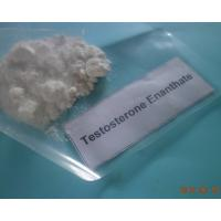 Quality Sterile Testosterone Enanthate For  Performance Enhancing Athlete Male Hormone Steroids Test En Muscle Gainning for sale