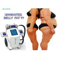 Quality Non Invasive Coolplas Slim Freeze Fat Freeze Slimming Machine With Touch Screen for sale