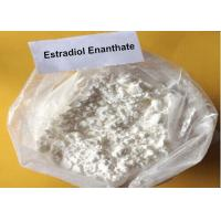 Quality Oral Raw Steroid Powder Estradiol Enanthate Oestradiol 17 - Heptanoate for sale