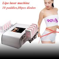 China 10 paddles 650nm Lipo laser slimming machine with 80 diodes DO-L02 on sale