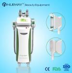 Quality 2015 newest slim machine lipo cryo cryolipolysis for sale
