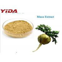 China Maca Extract Sex Steroid Hormones For Men Healthy on sale