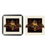 Quality SGS 3d Lenticular Picture With PS Frame 0.6mm Pet Thickness 5d Photos for sale