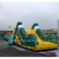 Quality Inflatable Water Game, Inflatable Crocodile Water Toy (LY-W22) for sale