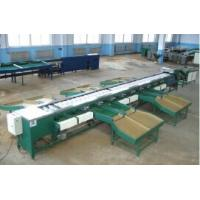 Quality XGJ-DNSPZ automatically feeding double line fruits grading machine for sale