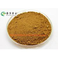 Quality Anti Histamine Apple Natural Plant Extracts 25% Quercetin For Preventing Cancer for sale