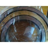 Quality FAG Bearing  SL014832 Cylindrical roller bearings with cage for sale