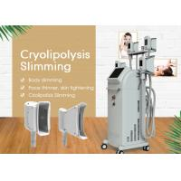 Quality Vertical Cryolipolysys Fat Freeze Slimming Machine With 3.5 Inch Touch Screen for sale