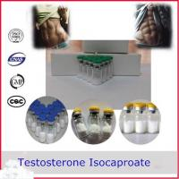 Quality Testosterone Isocaproate Testosterone Anabolic Steroid CAS 15262-86-9 for sale