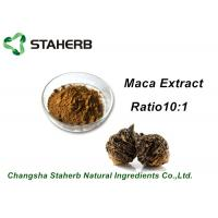 China Medical Herbal Extract Ratios Maca Root Extract Powder 4:1 For Male Health Care Product on sale