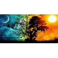 Quality Diamond Panting Scenery Tree Nature Moon Full Square Drill Cross Stitch 5D DIY Diamond Embroidery Decor for sale