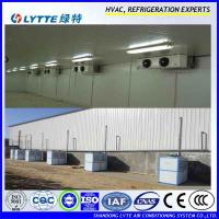 China Refrigeration cold room use condensing unit on sale