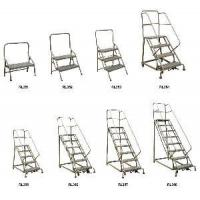 Quality Industrial Steel Rolling Ladders (RLC Series) for sale