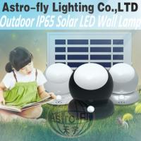 Quality 2018 New Integrated/all in one solar LED Wall Light for sale