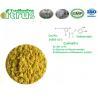 Buy cheap Cas 24292-52-2 Citrus Aurantium Extract Hesperidin Methyl Chalcone Powder from wholesalers
