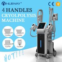 Quality Reduce Cellulite Fat Freeze Cryolipolysis Slimming Machine With Touch Screen RF Cavitation for sale