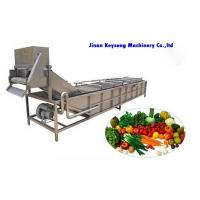 Quality Fresh Vegetable and Fruit  Food  Processing Machinery  Cleaning Machine for sale