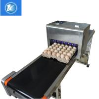 China Automatic Egg High Resolution Inkjet PrinterWith ABC Standard Printing Font for sale