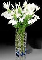 Quality Acrylic Flower Display/ Acrylic Flower Holder/ Acrylic Flower Stand for sale