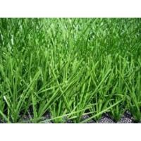 Quality 11000 Dtex Synthetic Soccer Grass , landscaping artificial turf for Football for sale