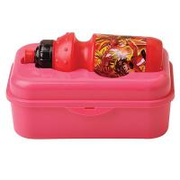 Quality Lunch Box with Drink Bottle for sale