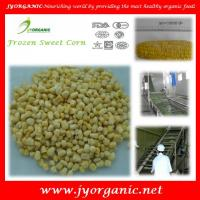 China Organic frozen  sweet corn in IQF on sale