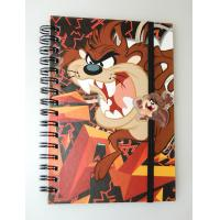 Quality OK3D factory wholesale A4/A5/A6 lenticular flip cover 3d notebook with spiral wire lenticular cover notebook for sale