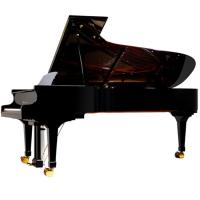 Quality 275cm 88 Key Upscale Luxurious Royal Conservatory Piano Solidwood AG-GP275 for sale