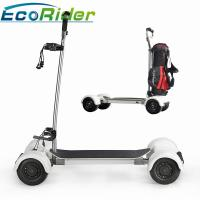 Quality EcoRider Scooter Golf Bag Carrier 1000w Four Wheels 40-60KM Mileage Brushless DC Motor for sale