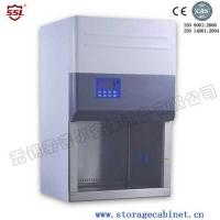 Quality Professional Class II BIO Safety Cabinet A2 With Timer For Laboratory for sale