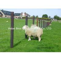 Quality Hot Dipped Galvanized Field Fence , High Tensile Woven Wire Fence Rolls for sale