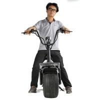 2016 Popular Harley Scooter Fat Tyre Removable battery Citycoco Electric Scooter
