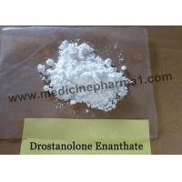 Quality 99% Purity Drostanolone enanthate / Masteron Enanthate for Bulking CAS 472-61-145 for sale
