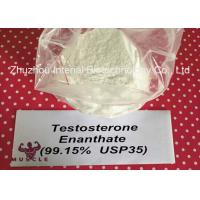 Quality Keeping Young Anabolic Steroid Test E Steroids Testosterone Enanthate CAS 315-37-7 for sale