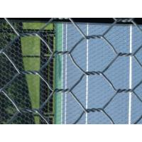 Quality ISO9001 chicken coope hexagonal wire mesh for good sale (manufacturer) for sale