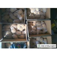 Quality Small Size Fresh Potato 100 G - 200 G Supply To Wholesaler And Supermarket for sale