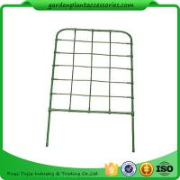 Quality Green Color Plastic Coated Metal Freestanding Garden Flower Trellis For Climbing Plants for sale