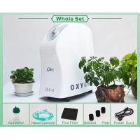 Quality Elderly And Children 3 Liter Oxygen Concentrator With Rnebulizer Long Life Time for sale