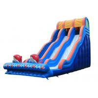China Large Inflatable Slide Inflatable Water Slide  Party Slide For Kids and Adults on sale