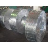 Quality Grade 50, 490, SGC, Q195, SGCC, SGCD spangle Hot Dipped Galvanized Steel Strip / Strips for sale