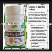 China Natural garcinia cambogia for weight loss slimming  supplement 60% hca 50 bottles can do private label OEM on sale