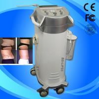 China Fat / Cellulite Reduction Power Assisted Slimming Beauty Equipment With Oil Free Vacuum Pump on sale
