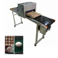 Continuous Eggs Automatic Batch Coding MachineWith 0mm - 5mm Printing Distance