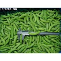 Quality Frozen Sugar snap peas for sale