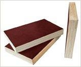 Buy Constructs the template at wholesale prices