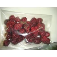 China IQF Fruits FD-Blackberry-01.jpg (JPEG , 600x450 ) on sale