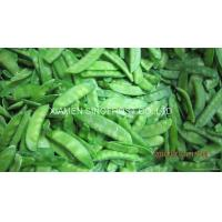 Quality IQF pea pods (IQF snow peas,Frozen pea pods) for sale